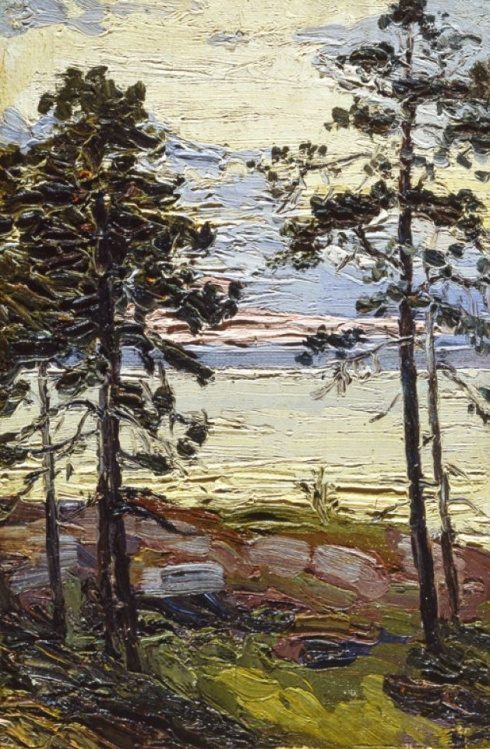 Сосны на берегу моря. 1910-е