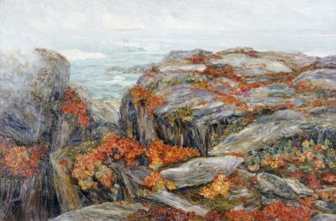 Красные цветы на Новой Земле. 1918